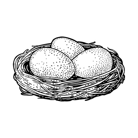 Three bird eggs in the nest. Vector black vintage engraving illustration. Isolated on white background. Hand drawn design element for poster Happy Easter
