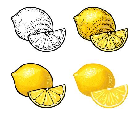 Fetta di limone ed e intero. Isolato su sfondo bianco. Incisione vintage vettoriale nero e colore e illustrazione piatta. Elemento di design disegnato a mano per etichette e poster