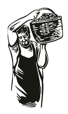 Men harvest the grapes in the vineyard. Black vintage vector engraving illustration for label, poster, icon, web design. Vektoros illusztráció