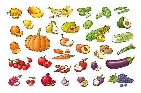 Set vegetables and fruits. Vector color flat engraving Иллюстрация