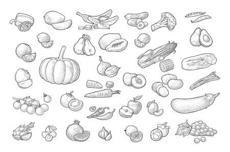 Set vegetables and fruits. Vector black vintage engraving