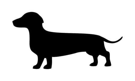 Dachshund icon. Dog standing silhouette. Vector illustration isolated