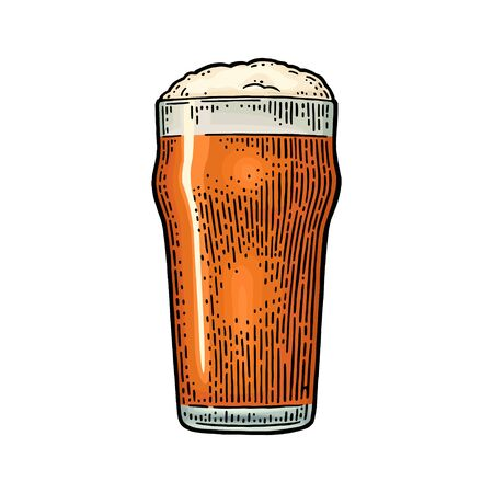 Glass with beer. Vintage color vector engraving illustration. Isolated on white background.