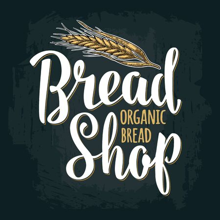 Wheat with lettering Bread Shop Organic. Vintage engraving illustration
