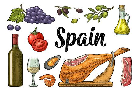 Spain traditional food set. Vector vintage color engraving