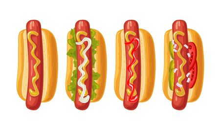 4 different types hotdog with tomato, ketchup, mayo, lettuce, mustard, onion. Vector color flat icon