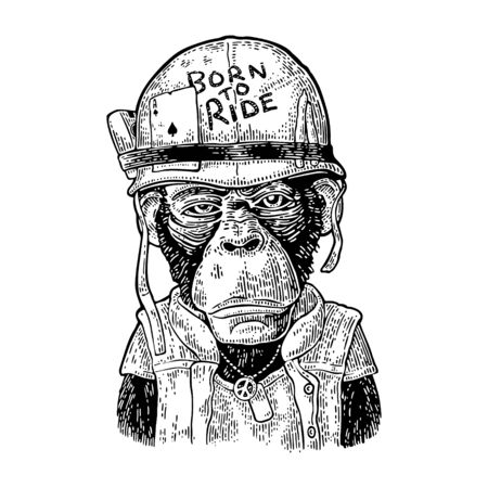 Monkey in soldier helmet. Vintage black engraving illustration for poster and t-shirt design. Isolated on white background.  イラスト・ベクター素材