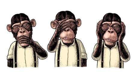 Three wise monkeys with hand on ears, eyes, mouth. Not see, not hear, not speak. Vintage color engraving illustration for poster, web, t-shirt, tattoo. Isolated on white background