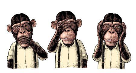 Tres monos sabios con la mano en las orejas, los ojos, la boca. No ver, no oír, no hablar. Ilustración de grabado de color vintage para cartel, web, camiseta, tatuaje. Aislado sobre fondo blanco