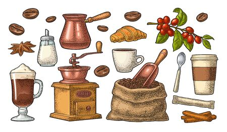 Set coffee. Beans, wooden scoop, sack, hand-held grinder, sugar, branch with leaf and berry, spoon, glass latte with whipped cream. Vintage color vector engraving isolated on white