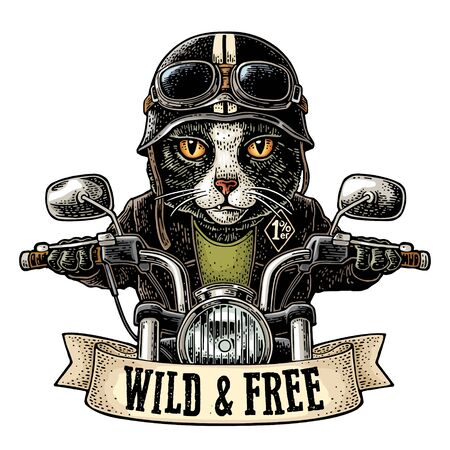 Cat driving a motorcycle rides. Vector vintage engraving