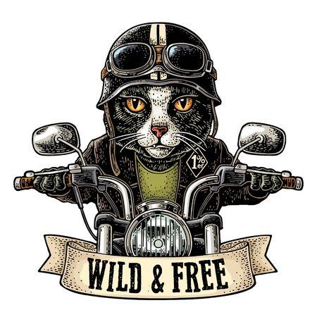 Katze, die ein Motorrad fährt. Vektor-Vintage-Gravur