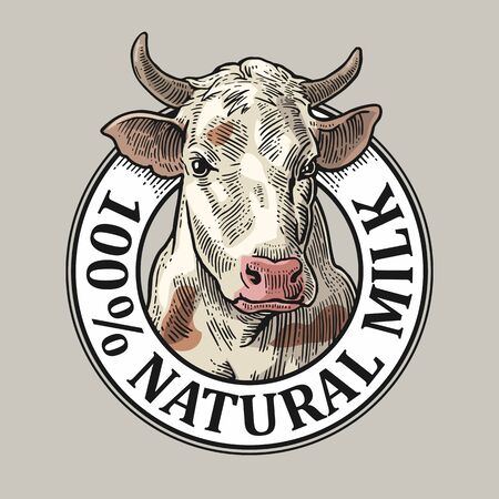 Cabeza de vaca. 100 Leche Natural. Grabado de vectores vintage