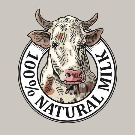 Tête de vache. 100 lait naturel. Gravure de vecteur vintage
