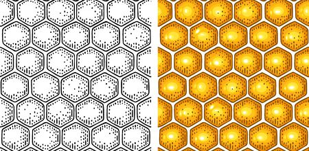Honey Seamless Pattern with honeycomb. Hand drawn design element. Vector color engraving illustration. Isolated on white background.