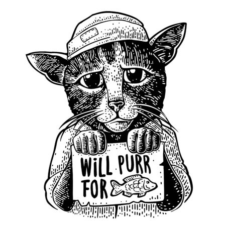 Cat dressed in hat and shirt holding a table with lettering WILL PURR FOR and fish drawing. Vintage black engraving illustration for poster and t-shirt.