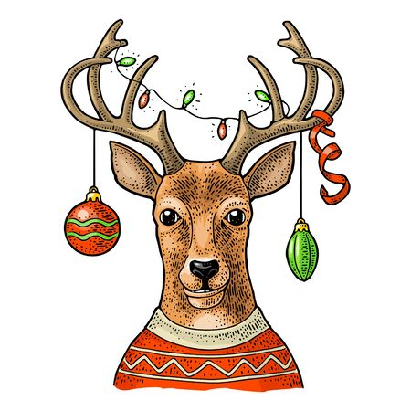 Deer with a christmas garland and a streamer on its horns dressed in sweater. Vintage color engraving illustration for poster. Isolated on white background