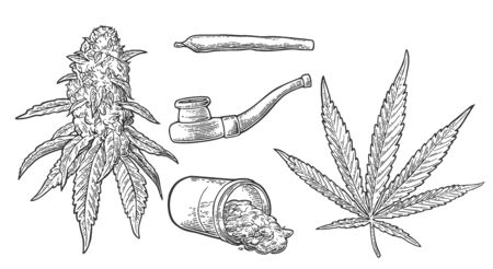 Marijuana buds, leaves, bottle , cigarettes and pipe for smoking cannabis. Hand drawn design element. Vintage black vector engraving illustration for label, poster, web. Isolated on white background