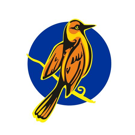 Golden Oriole perched on a branch. Vector flat illustration