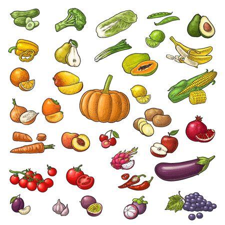 Définir les fruits et légumes. Mangue, citron vert, banane, avocat, citron, pêche, agrumes, pomme, poire, raisin, cerise, pomme de terre, maïs, poivre, pomme de terre, tomate, ail. Gravure isolée vintage de couleur de vecteur Vecteurs