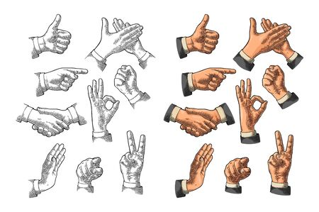 Male Hand sign. Like, handshake, ok, stop, victory, pointing, applause gesture. Vector color vintage engraved illustration isolated white background