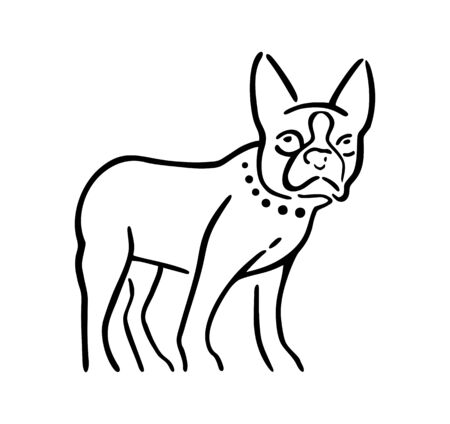 Dog isolated on white background. Vector black and gray flat illustration.