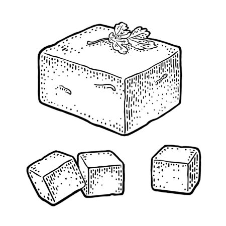 Tofu. Vector black vintage engraved illustration isolated on white background.