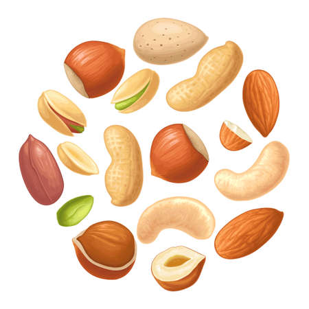 Set whole and half nut seed with green leaves. Hazelnut, peanut, almond, cashew, pistachio. Vector color realistic illustration. Isolated on white background