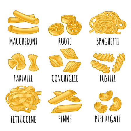 Set with different types of pasta. Farfalle, conchiglie, maccheroni, fusilli, penne, pipe rigate, spaghetti, ruote, fettuccine. Vector vintage color illustration isolated on white background Vecteurs