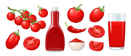 Ketchup bottle, chilli, tomato sauce in a plate, juice, branch, half and slice and slice tomatoes. Vector flat color illustration. Isolated on white background.