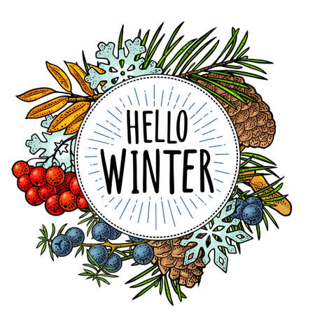 Circle shape with pine cone, fir branch, rowan, snowflake for Merry Christmas and New Year. Hello winter lettering with salute. Vector vintage color engraving on white