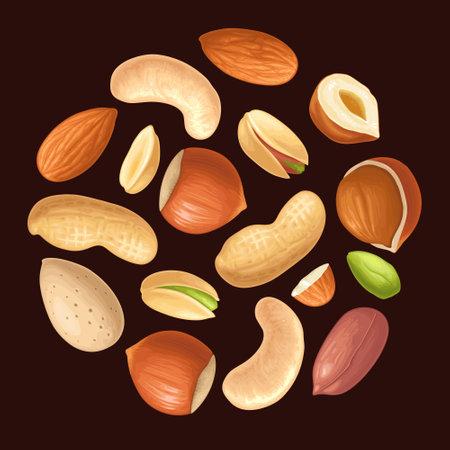 Set whole and half nut seed. Hazelnut, peanut, almond, cashew, pistachio. Vector color realistic illustration. Isolated on black background