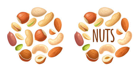 Set whole and half nut seed. Vector color realistic illustration. Isolated on white background. Handwriting lettering hazelnut, peanut, almond, cashew, pistachio