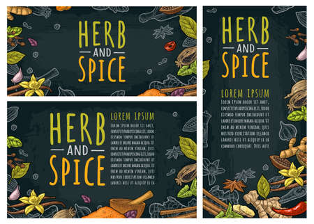Set posters with pepper, cinnamon, mint, cloves, cocoa, poppy, chilli, vanilla, bay leaf, anise, garlic, cardamom, ginger. HERB and SPICE handwriting lettering. Vector color vintage engraving on dark Vektorgrafik