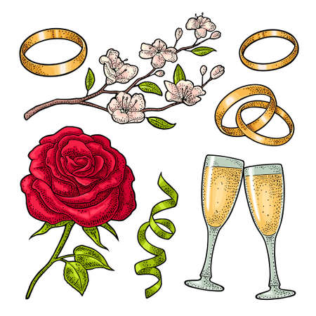 Wedding set vintage color vector engraving isolated on white. Rose flower with leaves, two bonded rings, serpentine ribbon, clinking glasses champagne, cherry branch. For greeting card, invite