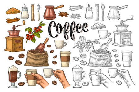 Set coffee. Beans, wooden scoop, sack, grinder, branch, glass latte with whipped cream. Female hand hold cup. Vintage color vector engraving isolated on white. Calligraphic handwriting lettering
