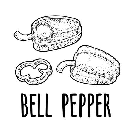 Whole, half and slice sweet bell pepper. Vector black vintage engraving illustration for menu, poster, label. Isolated on white background. Hand drawn design element