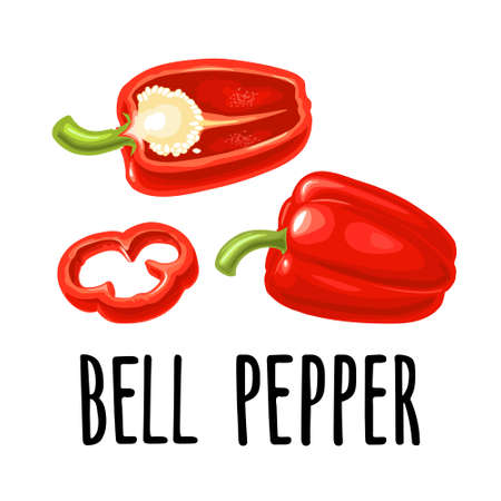 Whole, half and slice red sweet bell pepper. Vector color realistic illustration for menu, poster, label. Isolated on white background. Hand drawn design element