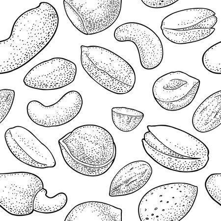 Seamless pattern whole and half nut seed. Hazelnut, peanut, almond, cashew, pistachio. Vector black engraving illustration. Isolated on white background