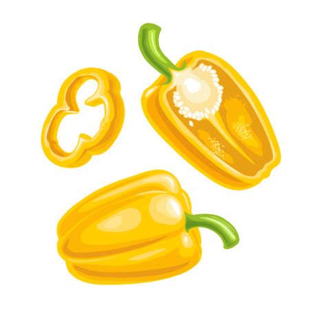 Sweet bell pepper. Vector vintage engraved illustration