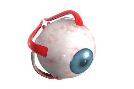 Color redering 3D de un ojo humano.