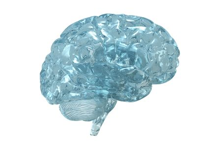 Glass 3D view of the human brain.