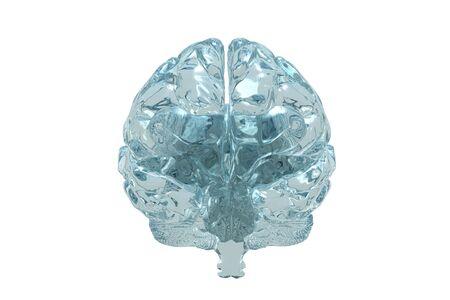 Vidrio vista 3D del cerebro humano.