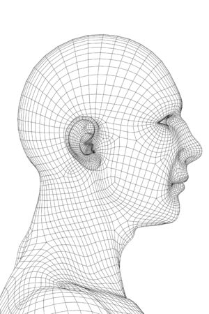 3D redering of a face of a men (wireframe).