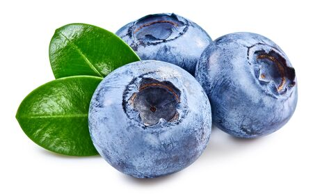 Blueberry isolated on white Banque d'images