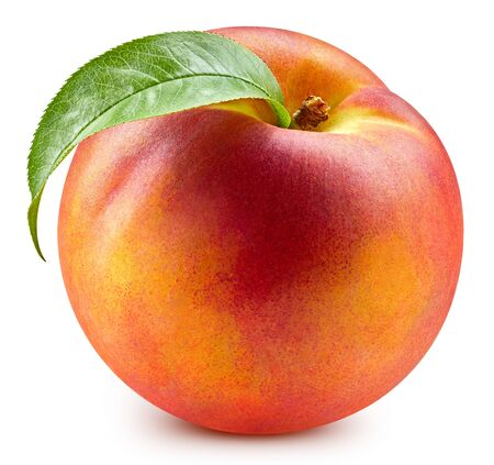 Fresh peach leaf on white. Organic peach. Peach . Full depth field Standard-Bild