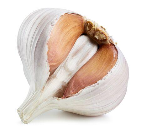 Garlic. Fresh organic garlic isolated on white background. Garlic macro