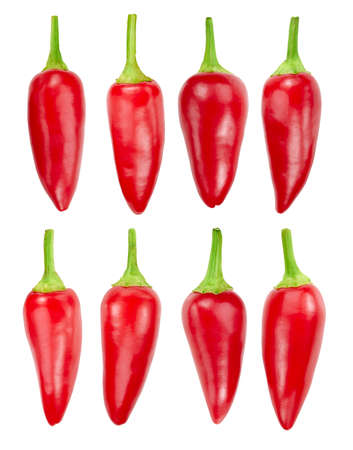 Ripe red hot chili peppers collection isolated on white. Ripe red hot chili peppers Clipping Path. Professional studio macro shooting