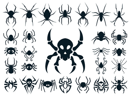 A set of spider shapes in different styles: natural, cute cartoon, spider skull design and tribal tattoo style. Stock Photo