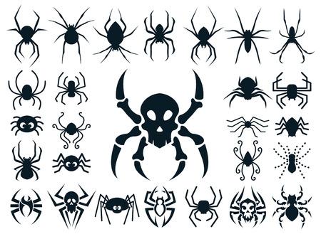 calavera caricatura: Un conjunto de formas de araña en diferentes estilos:, dibujo animado lindo naturales, diseño del cráneo de la araña y el estilo tatuaje tribal.